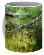 Reflecting Pond Glacier National Park Painted Coffee Mug