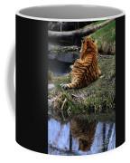 Reflecting Stripes Coffee Mug