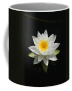 Reflecting Water Lilly IIi Coffee Mug