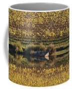 Reflection-country-victoria  Coffee Mug