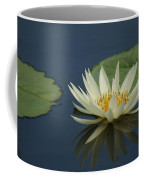 Reflection In Time...   # Coffee Mug