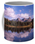Reflection Of Trees And Clouds Coffee Mug