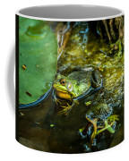 Reflections Of A Bullfrog Coffee Mug