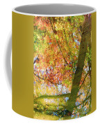 Reflections Of A Colorful Fall 001 Coffee Mug