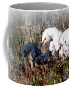 Reflections Of Different Colors - Living In Harmony Coffee Mug
