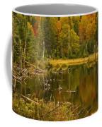 Reflections Of The Fall Coffee Mug