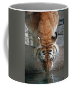 Reflections Of The Wild Coffee Mug