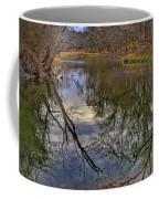 Reflections On A Warm Winter Day Coffee Mug