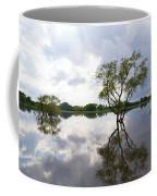 Reflective Flood Waters Coffee Mug