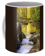 Reflective Pools Coffee Mug