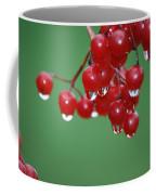 Reflective Red Berries  Coffee Mug