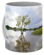 Reflective Times Coffee Mug