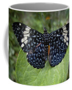 Regal Blue Butterfly Coffee Mug