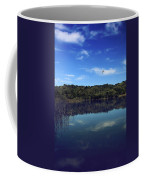 Regardless Of The Blues Coffee Mug by Laurie Search
