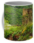 Reinfels Castle Ruins And Wildflowers In The Rhine River Valley 1 Coffee Mug