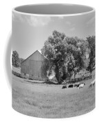 Reive Blvd Barn 15059b Coffee Mug