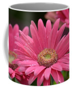 Rejoice It's Spring Coffee Mug