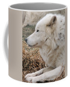 Relaxing In The Afternoon Coffee Mug