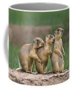 Relaxing Utah Prairie Dogs Cynomys Parvidens Wild Utah Coffee Mug