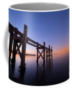 Remaining Pilings Coffee Mug