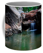 Remote Falls Coffee Mug