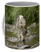 Replenish Coffee Mug