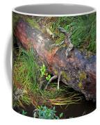Replenishing The Earth I Coffee Mug
