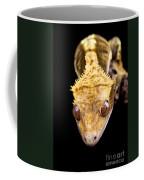 Reptile Close Up On Black Coffee Mug
