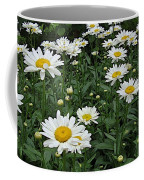 Requested Daisies Coffee Mug