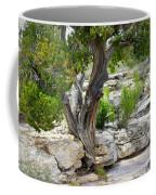 Resilient Tree Coffee Mug