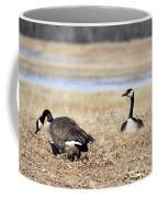Restful Migration Coffee Mug