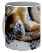 Resting Comfortably Coffee Mug