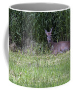 Resting Doe Coffee Mug
