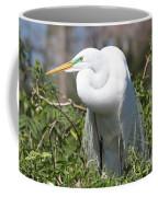 Resting Great Egret Coffee Mug