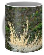 Resting In The Sun's Light Coffee Mug