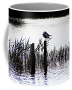 Resting Seagull  Coffee Mug