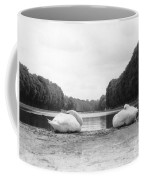 Resting Swans Coffee Mug