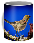 Resting Verdin Coffee Mug