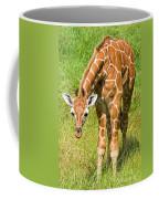 Reticulated Giraffe 6 Week Old Calf Coffee Mug