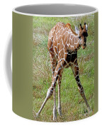 Reticulated Giraffe Coffee Mug