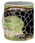 Reticulated Giraffe On Ground Coffee Mug
