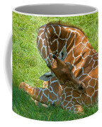 Reticulated Giraffe Sleeping Coffee Mug