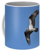 Returning Osprey Coffee Mug