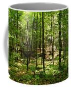 Wooded Path 13 Coffee Mug