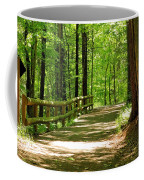 Wooded Path 15 Coffee Mug