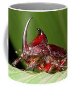 Rhinoceros Beetle Coffee Mug