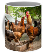 Rhode Island Red Chickens And Wooden Feeder  Coffee Mug