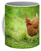 Rhode Island Red Chicken Coffee Mug