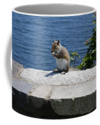 Rhode Island Squirrel Coffee Mug