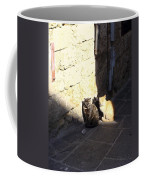 Rhodes Cat Trio Coffee Mug